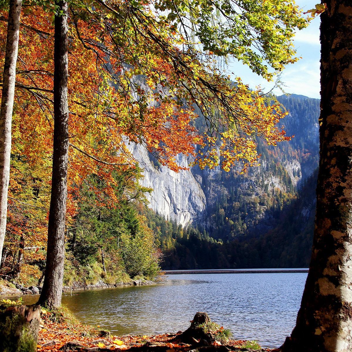 Herbst am Toplitzsee